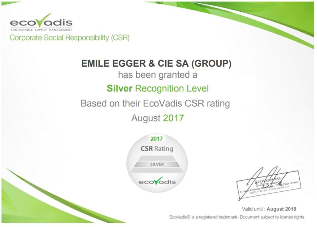 Corporate Social Responsibility Certificate Csr Egger Pumps